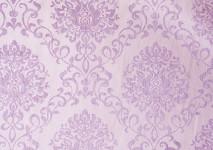 IMG_4240_diego_violett