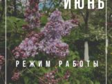 photo_2020-05-31_12-21-29